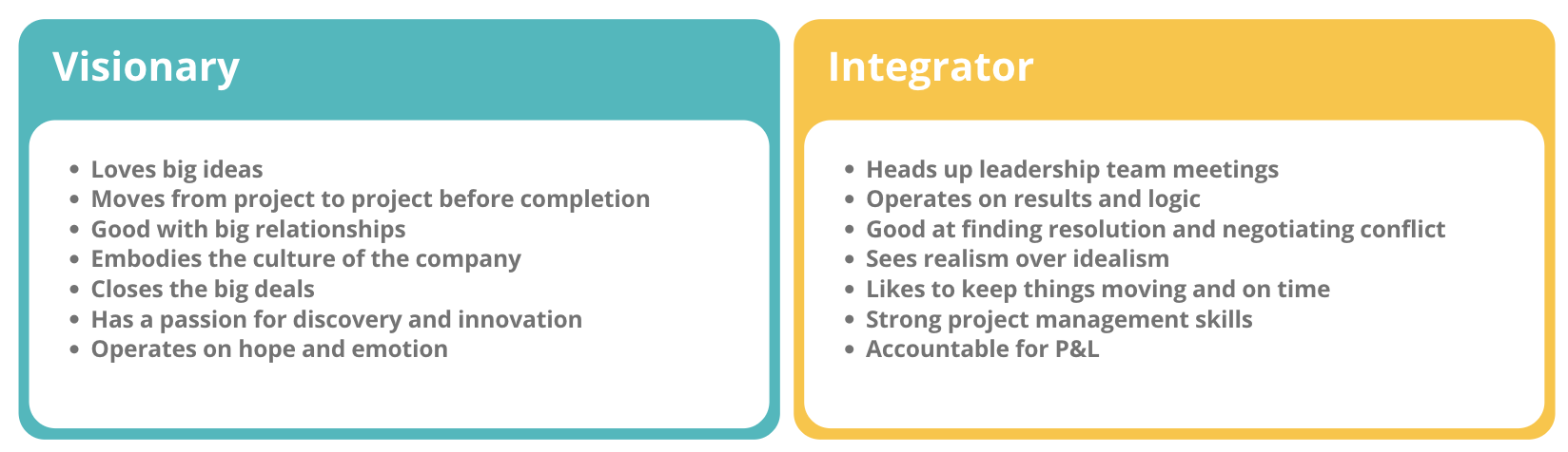 Visionar Vs. Integrator